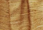 Venus Faux Silk Almond